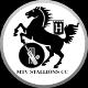 MTV Stallions