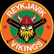 Reykjavik Vikings